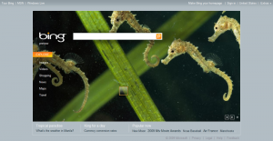 800px-Bing_(search_engine)_homepage_screenshot