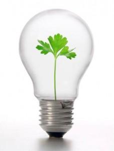 csr_lightbulb