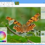 Pointed Lines And Curves Made Easy With Paint.NET 4.0.0 Beta 4