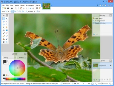 Paint.NET 4.0.0 Beta 4